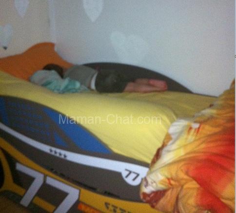 Tidoux dans son lit de grand