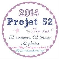 logo projet 52
