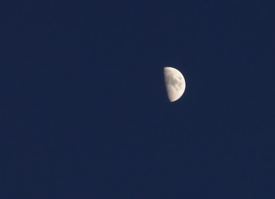 Demi-croissant_de_lune